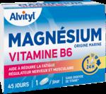 Govital Magnésium Vitamine B6 Comprimés B/45 à Pessac