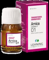 Lehning Arnica Complexe N° 1 Solution Buvable En Gouttes Fl/30ml à Pessac