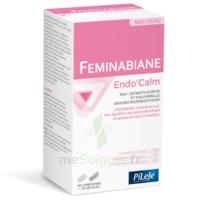 Pileje Feminabiane Endo'calm Comprimés + Gélules B/60+30 à Pessac