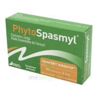 Phytospasmyl Caps B/60 à Pessac