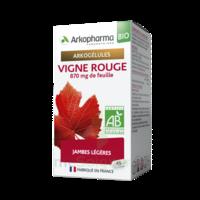 Arkogélules Vigne Rouge Bio Gélules Fl/45 à Pessac
