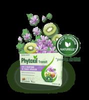 PHYTOXIL TRANSIT Comprimés B/20 à Pessac