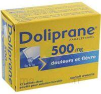 DOLIPRANE 500 mg Poudre pour solution buvable en sachet-dose B/12 à Pessac