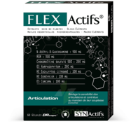 Synactifs Flexactifs Gélules B/60 à Pessac