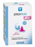 Ergykid Mag Poudre Solution Buvable 14 Sachets à Pessac