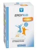 Ergykid Vitamin' Poudre Solution Buvable 14 Sachets à Pessac