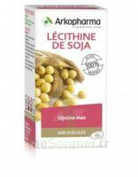 Arkogélules Lécithine de soja Caps Fl/45 à Pessac