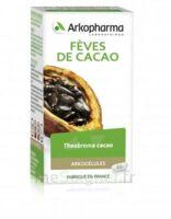 Arkogélules Cacao Gélules Fl/45 à Pessac