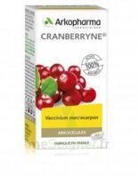 Arkogélules Cranberryne Gélules Fl/150 à Pessac