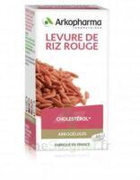 Arkogélules Levure De Riz Rouge Gélules Fl/150 à Pessac