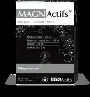 Synactifs Magnactifs Gélules B/60 à Pessac