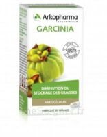 Arkogélules Garcinia Gélules Fl/45 à Pessac