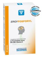 Ergyfosforyl Caps B/60 à Pessac