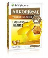 Arkoroyal Gelée Royale 1000 Mg Caps B/30 à Pessac