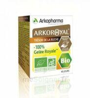 Arkoroyal 100% Gelée Royale Bio Gelée Pot/40g à Pessac
