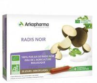 Arkofluide Bio Ultraextract Radis Noir Solution Buvable 20 Ampoules/10ml à Pessac