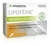 Lipofeine Graisse et Sucres Gélules B/60 à Pessac