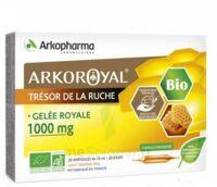 Arkoroyal Gelée Royale Bio 1000 Mg Solution Buvable 20 Ampoules/10ml à Pessac