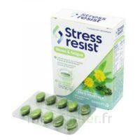 Stress Resist Comprimés Stress & fatigue B/30 à Pessac