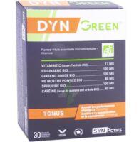 Synactifs Dyngreen Bio Gélules B/30 à Pessac