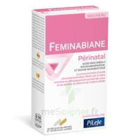 Pileje Feminabiane Périnatal 28 Gélules Blanches Et 28 Gélules Jaunes à Pessac