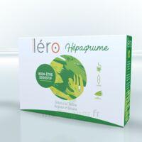 Léro Hepagrume Solution buvable complément alimentaire 20 Ampoules/10ml à Pessac