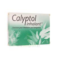 CALYPTOL INHALANT, émulsion pour inhalation par fumigation à Pessac