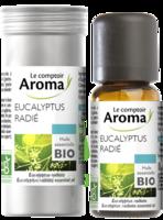 Huile Essentielle Bio Eucalyptus Radié à Pessac
