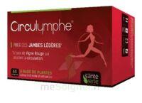 Santé Verte Circulymphe Triple Actions B/60 à Pessac