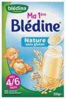 Blédine Ma 1ère blédine nature 250g à Pessac
