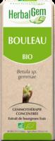 Herbalgem Bouleau Macerat Mere Concentre Bio 30 Ml à Pessac