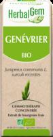 Herbalgem Genevrier Macerat Mere Concentre Bio 30 Ml à Pessac
