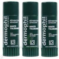 Dermophil indien haute tolérance stick lèvres lot de 2 + 1 offert à Pessac