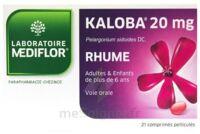 KALOBA 20 mg Comprimé pelliculé Plq/21 à Pessac