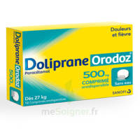 DOLIPRANEORODOZ 500 mg, comprimé orodispersible à Pessac