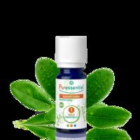 Puressentiel Huiles essentielles - HEBBD Ravintsara BIO* - 5 ml à Pessac