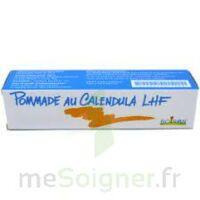 CALENDULA LHF POM T/20G à Pessac