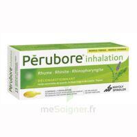 PERUBORE Caps inhalation par vapeur inhalation Plq/15 à Pessac