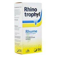 RHINOTROPHYL Solution pour pulvérisation nasale 1Fl/12ml à Pessac