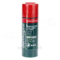 Dermophil Indien Réparation Forte Lèvres 4 G à Pessac