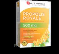 Forte Pharma Propolis 500 Solution buvable 20 Ampoules/10ml à Pessac