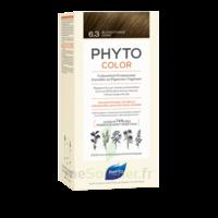 Acheter Phytocolor Kit coloration permanente 6.3 Blond foncé doré à Pessac