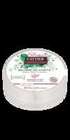 Beurre De Karité - 100% Bio - 100 G à Pessac