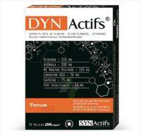 Synactifs Dynactifs Gélules B/30 à Pessac