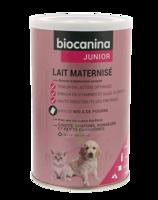 Biocanina Lait Poudre Maternisé B/400g à Pessac