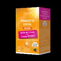 Terracotta Cocktail Solaire Comprimés 3*B/30 à Pessac