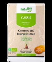 Herbalgem Gomme cassis bio B/24 à Pessac