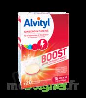 Acheter Alvityl Boost Comprimés B/20 à Pessac