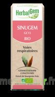 Herbalgem Sinugem Solution Buvable Bio Fl Cpte-gttes/30ml à Pessac