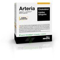 Aminoscience Santé Arteria Gélules 2b/56 à Pessac